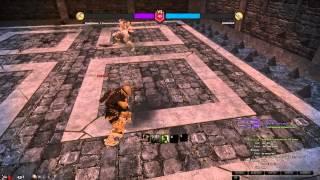 Vindictus Kai(Lv41) vs Hurk(Lv80) PVP Arena