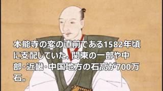 戦国武将・偉人の年収ランキング 2位 徳川家康 年収1000億円 **おすす...