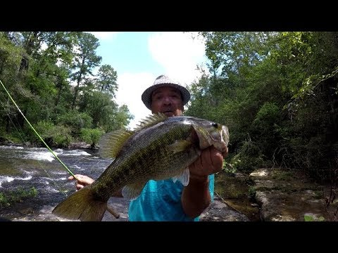 Bass Fishing In A Creek With The Real Swimbait