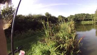 Carp Fishing in the Margins   Trevella Holiday Park Newquay