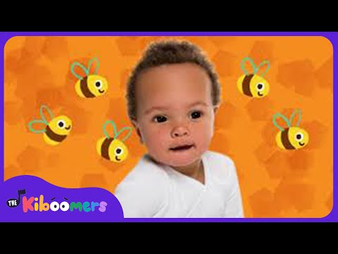 Here is the Beehive | Kids Song | Bee Song for Children | The Kiboomers