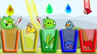 Angry Birds Drink Water - EVERY BIRDS NEED RAINBOW WATER SHOOTING GAME!