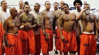 Belgesel İzle - Bölge Hapishanesi