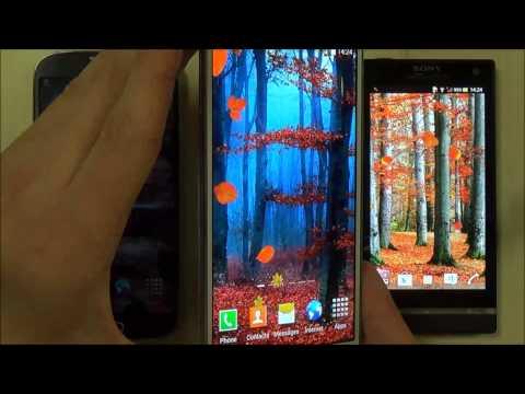 Осенние Обои На Телефон Андроид