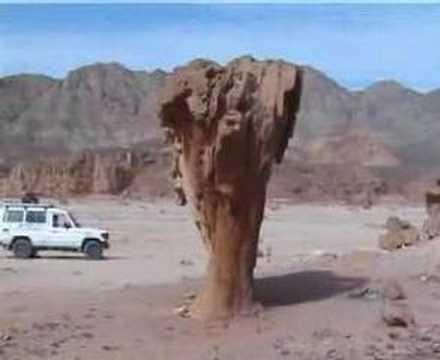 holiday trip at Sinai peninsula