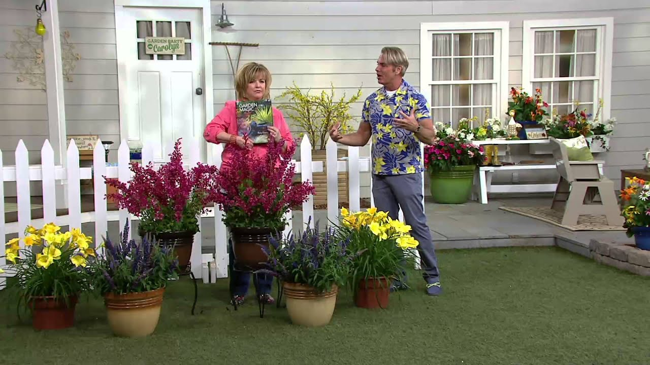 Cottage Farms Perpetuals Fragrant Garden 6pc Set on QVC YouTube