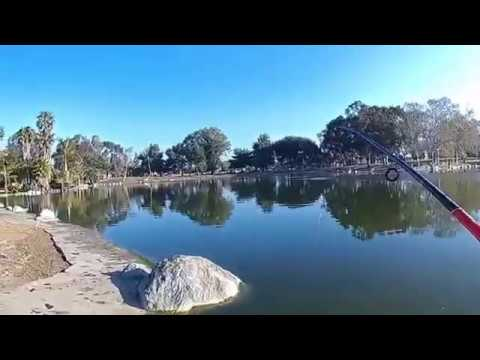 Bass Fishing Mile Square Park Fountain Valley, Ca