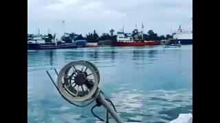 Balıkçılar denizde av peşinde