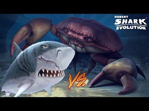 Hungry Shark Evolution MEGALODÓN vs CANGREJO GIGANTE NEGRO!