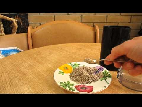 Особенности применения расторопши: шрот, масло, мед, БАД