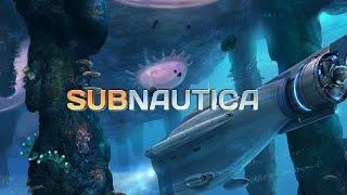 Subnautica on Core 2 Duo E8400 3GHz GTX 750ti 1080p Med
