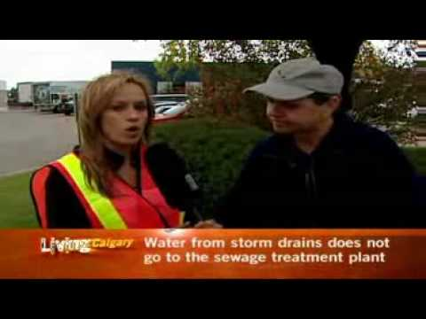 Trout Unlimited Canada's Yellow Fish Road program on Living Calgary