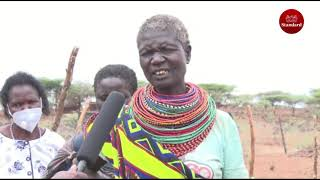 Isiolo embraces fish farming and beekeeping to diversify their livelihood livestock