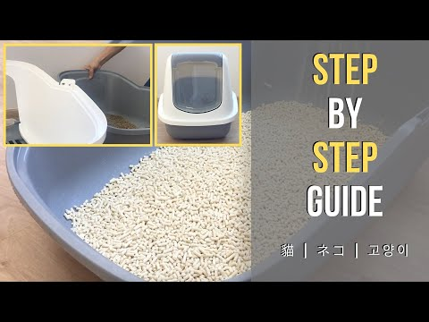 How To Clean Your Cat Litter Box - Step By Step Guide