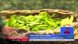 Kenya to diversify tea production and targets to produce a variety with higher yields