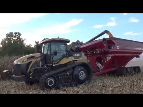 2016 Corn Harvest near Medora Illinois