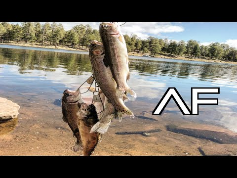ARIZONA FISHING FOR TROUT AT WOODS CANYON LAKE!!! EASY LIMIT!!!