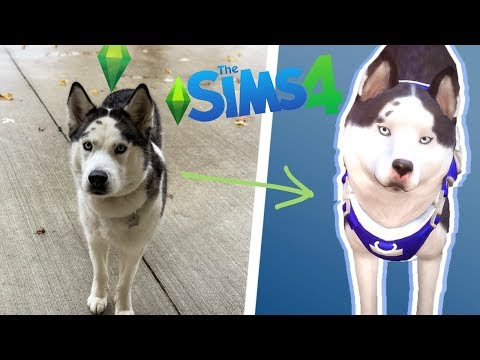 MAKING MY SERVICE DOG?! // The Sims 4 Cats & Dogs