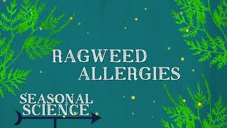 Seasonal Science | Ragweed Allergies | UNC-TV