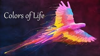 Colors of Life Quotes