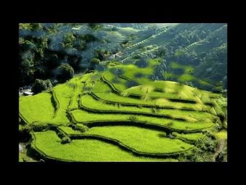 Văn Cô Bé Đông Cuông - Khắc Tư-Thanh Ngoan