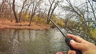 Что в себе ТАИТ РУЧЕЙ вдоль трассы Рыбалка в умирающей речушке