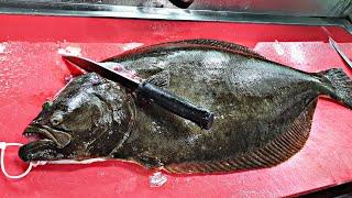 낚시로 잡은 6kg 자연산 대광어 회뜨기
