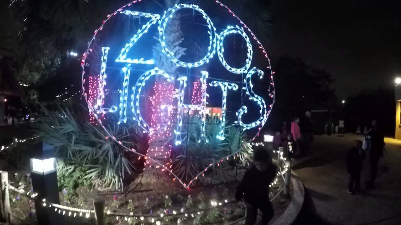 At the Houston Zoo light
