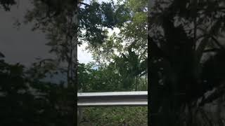 Driving Around Santander from Bucaramanga to San Vicente de Chucuri