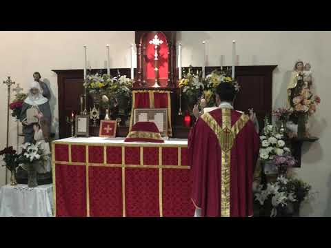 Traditional Latin Mass of Saturday 12th September 2020 at St Anne's - The Most Holy Name of the BVM from YouTube · Duration:  48 minutes 52 seconds