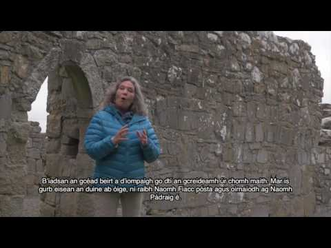 Naomh Fiacc: Scéal á insint ag an seanchaí: Nuala Hayes (the Story of St Fiacc, told by Nuala Hayes)