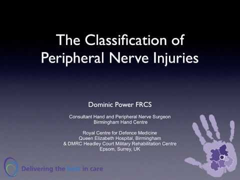 The Classification of Peripheral Nerve Injuries