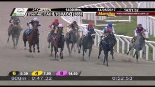 Vidéo de la course PMU PREMIO CAFE TORADO (2008)