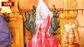 ஆடி ஞாயிறுக்கிழமை ஸ்ரீ ருத்ரமகா காளியம்மன் அபிஷேகம் #amman #durgaiamman #abhishekam #aadivelli