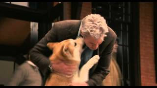 Hachi A Thousand Years