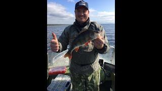 Ловля спиннингом на Рыбинском водохранилище Рыбалка с БомбяО