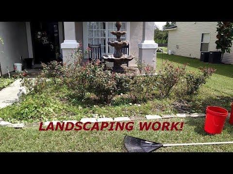 Landscaping Work - Shrub Removal, Weeding, & Shrub Trimming