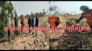 ពលរដ្ឋប្រទះឃើញអាវុធយុទ្ធភ័ណ្ឌមិនទាន់ផ្ទុះជាច្រើនគ្រាប់នៅក្នុងរណ្តៅដី |Khmer News Sharing