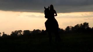 Фотосессия с лошадью - ожидание / реальность :D