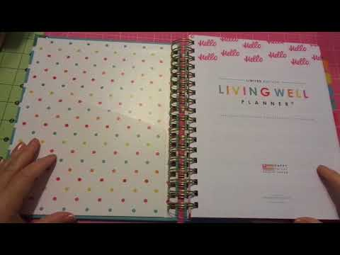 Happy Mail: Living Well Planner/Budget/Work & Personal Update