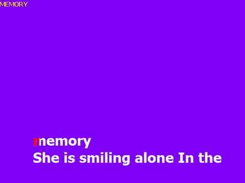 Karaoke Barry Manilow - Memory