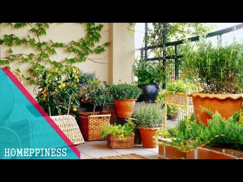 MUST WATCH !!! 30+ Cheap Small Balcony Garden Ideas With Vegetables & Flowers
