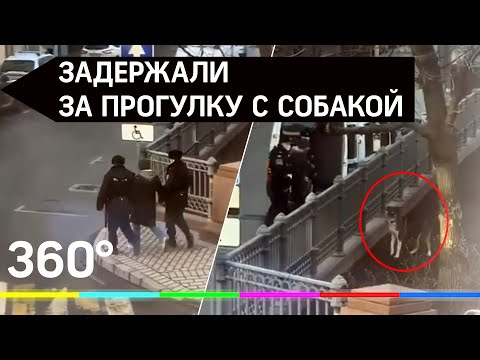 Видео: задержание за прогулку с собакой в Москве