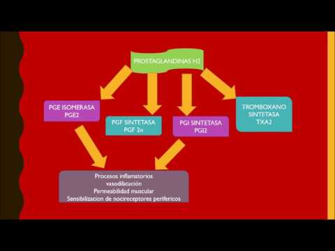 Como funcionan los aines youtube - Como funcionan los emisores termicos ...