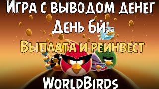 WorldBirds экономическая игра с выводом денег 4й день ночной выпуск