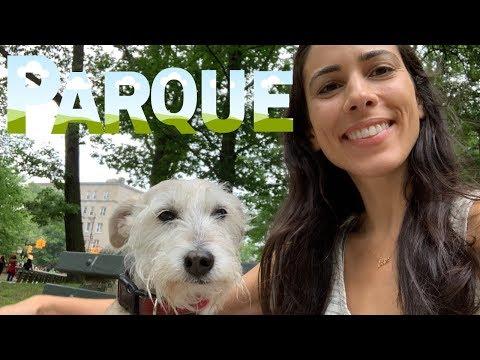 Brazilian Portuguese Vocabulary - Um Passeio no Parque