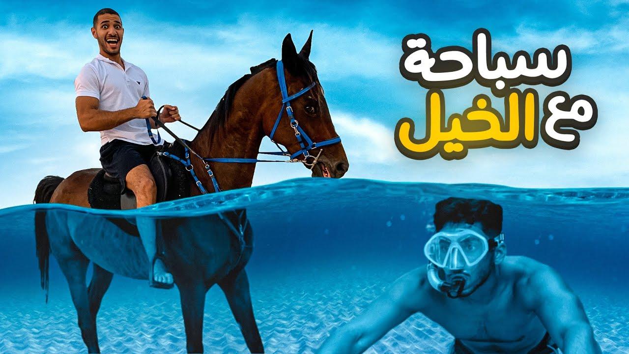 تحدي السباحة مع أشرس خيل !! (كسر سيارتنا !! 🤯)   HORSE CHALLENGE