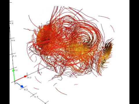 magnetic field decay of a IUCAA knot