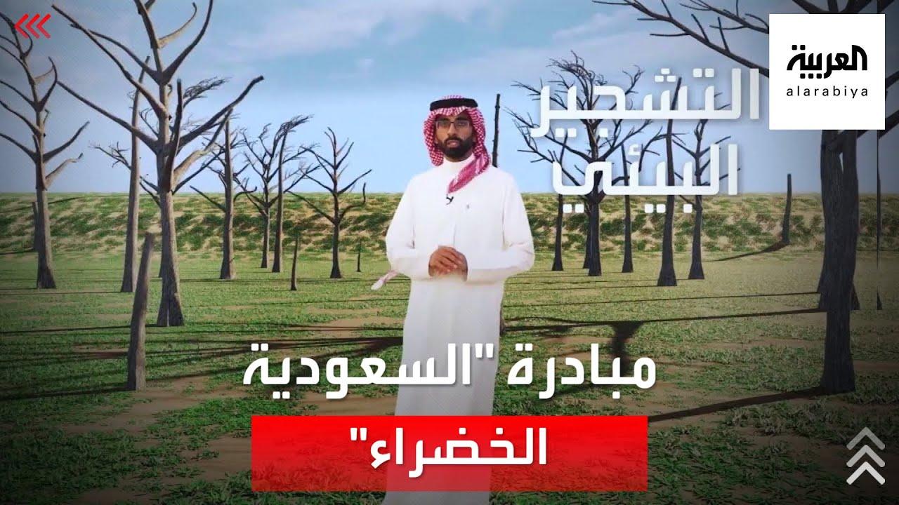 مبادرة السعودية الخضراء تستهدف زراعة 10 مليارات شجرة