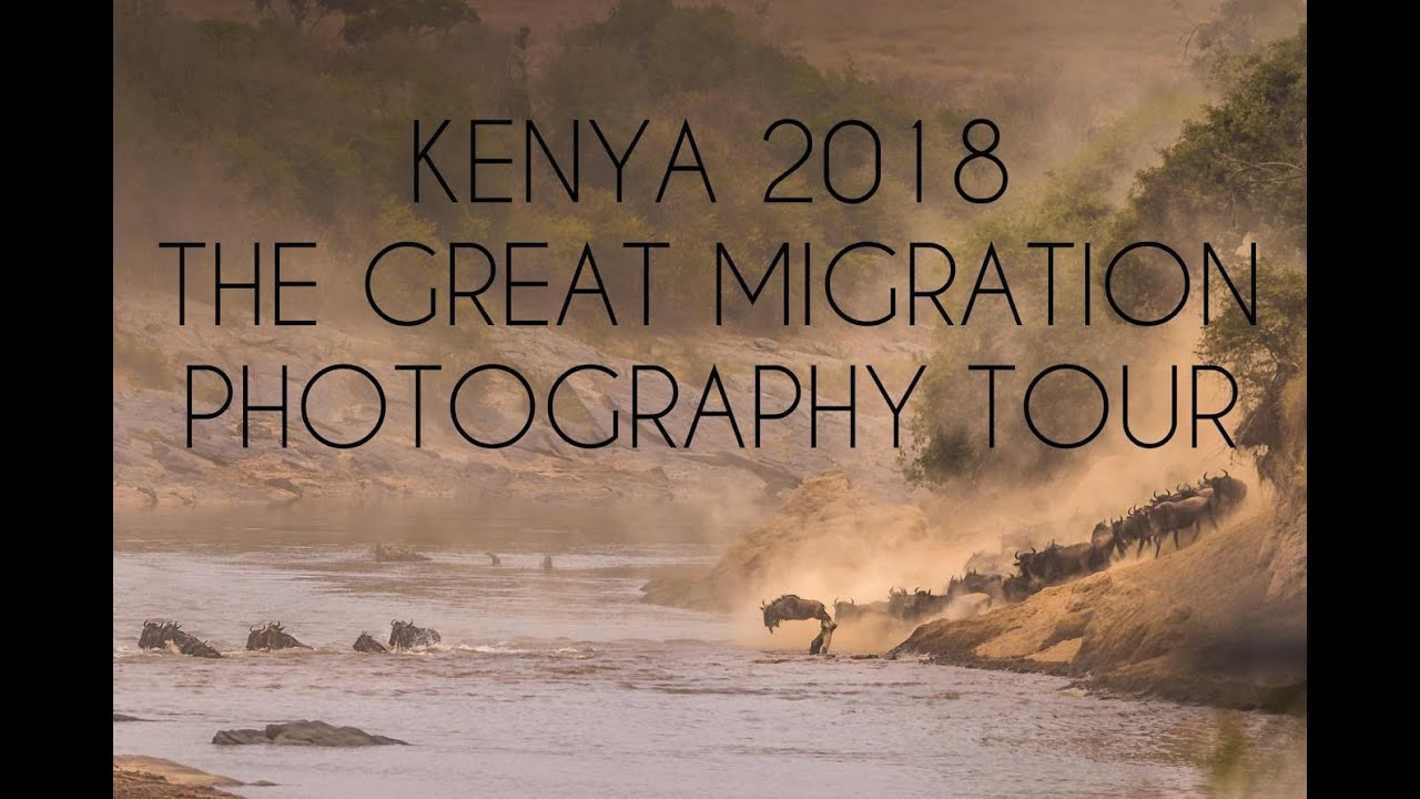 Kenya 2018  l  The Great Migration Photography Tour